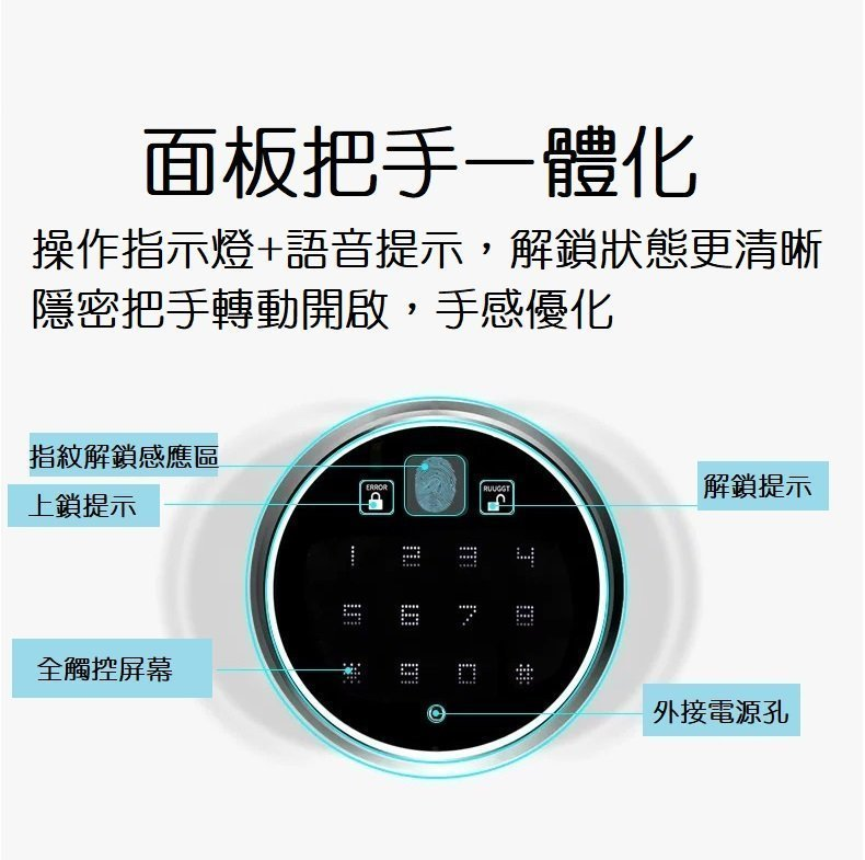 Integrated electronic lock panel handle20200922